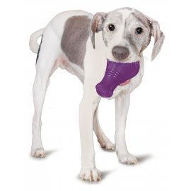 Busy Buddy® Squeak 'n Treat Booya™ - Medium