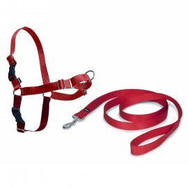 Easy Walk Dog Harness - Medium-Large - Red