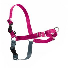 Easy Walk Dog Harness - Medium-Large - Raspberry Pink