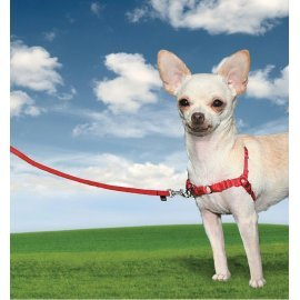 Easy Walk Small Dog Harness - Extra Small - Red