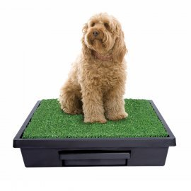 Pet Loo™ Portable Pet Dog Indoor Toilet - Medium