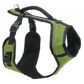 EasySport™ Dog Harness - Small - Apple Green