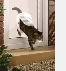 Petsafe staywell big cat small dog from catflaps staywell big cat small dog the largest pet door that can be installed into glass planetlyrics Gallery