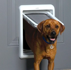 Petsafe Selective Electronic Dog Door