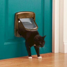Staywell 4 Way Locking Cat Flap 320 - Brown -  by PetSafe