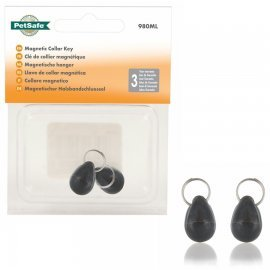 Petsafe Staywell Magnetic Collar Key (2 Pack) REL980
