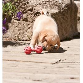 Busy Buddy Puppy Waggle Small