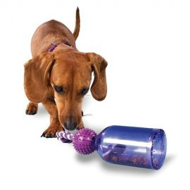 Tug-A-Jug - X Small Dog Toy