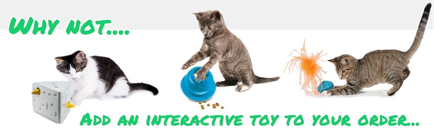 Why not add a cat toy
