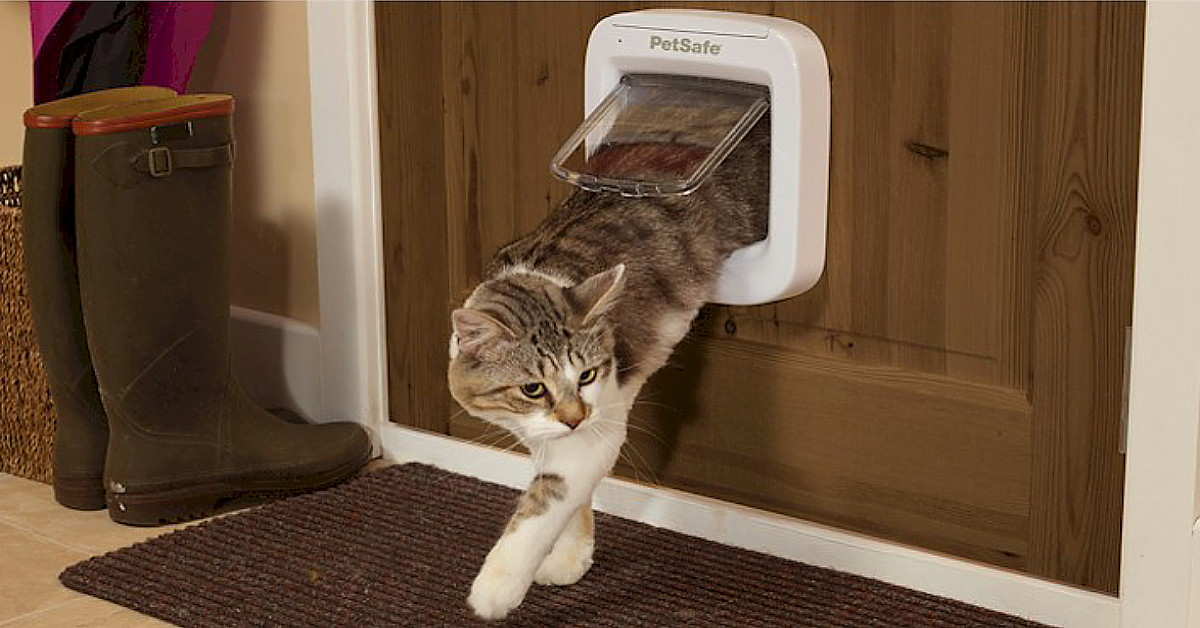 Microchip Cat Flaps